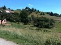 Image for Zemljišče, Boreča