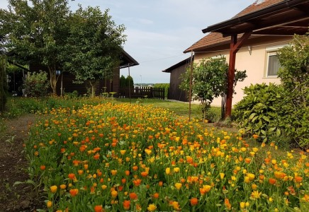 Image for Stanovanje z zemljiščem