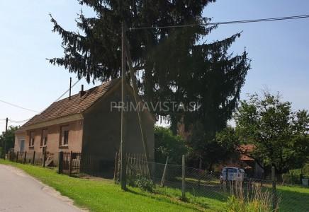 Image for Starejša hiša, Pince