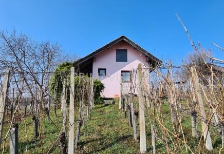 Image for Zidanica, Čentiba (2115)